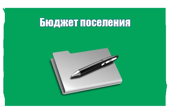 Бюджет поселения